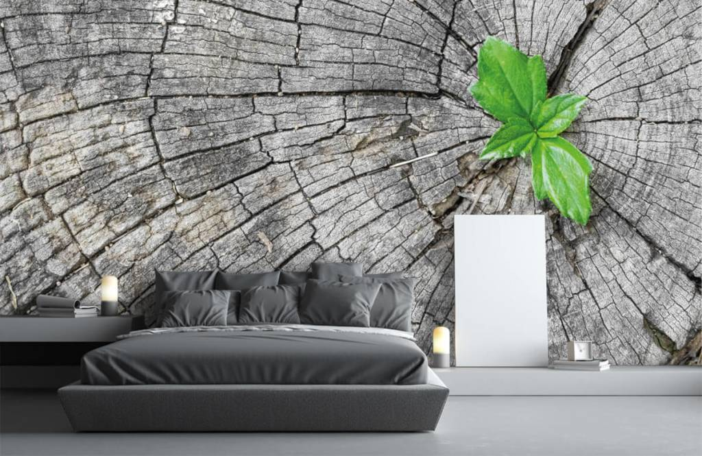 Hout behang - Doorsnede van een boomstam - Slaapkamer 5