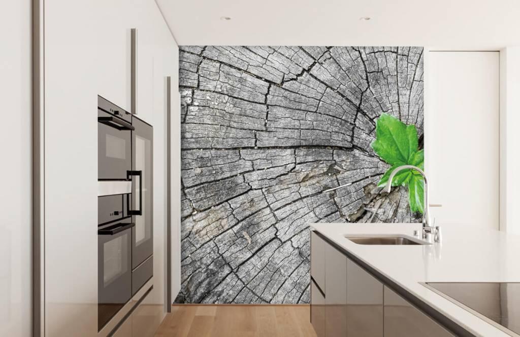 Hout behang - Doorsnede van een boomstam - Slaapkamer 6