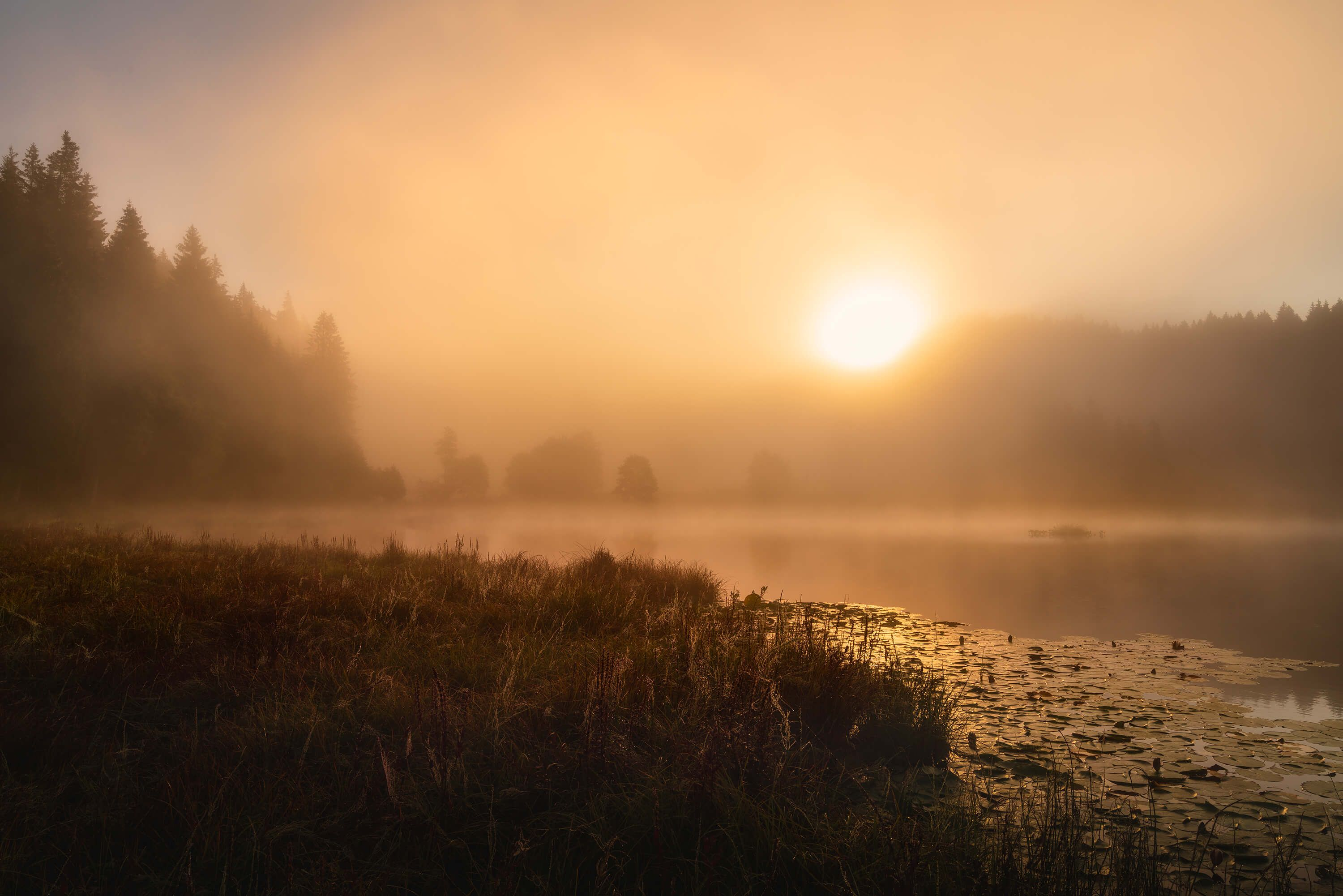 The incredible light of an October morning
