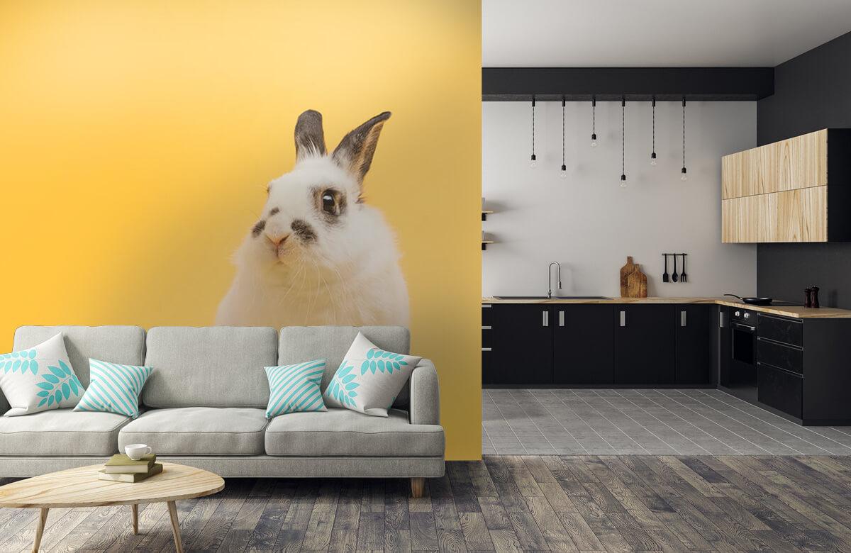 Dieren Poserend konijn 10