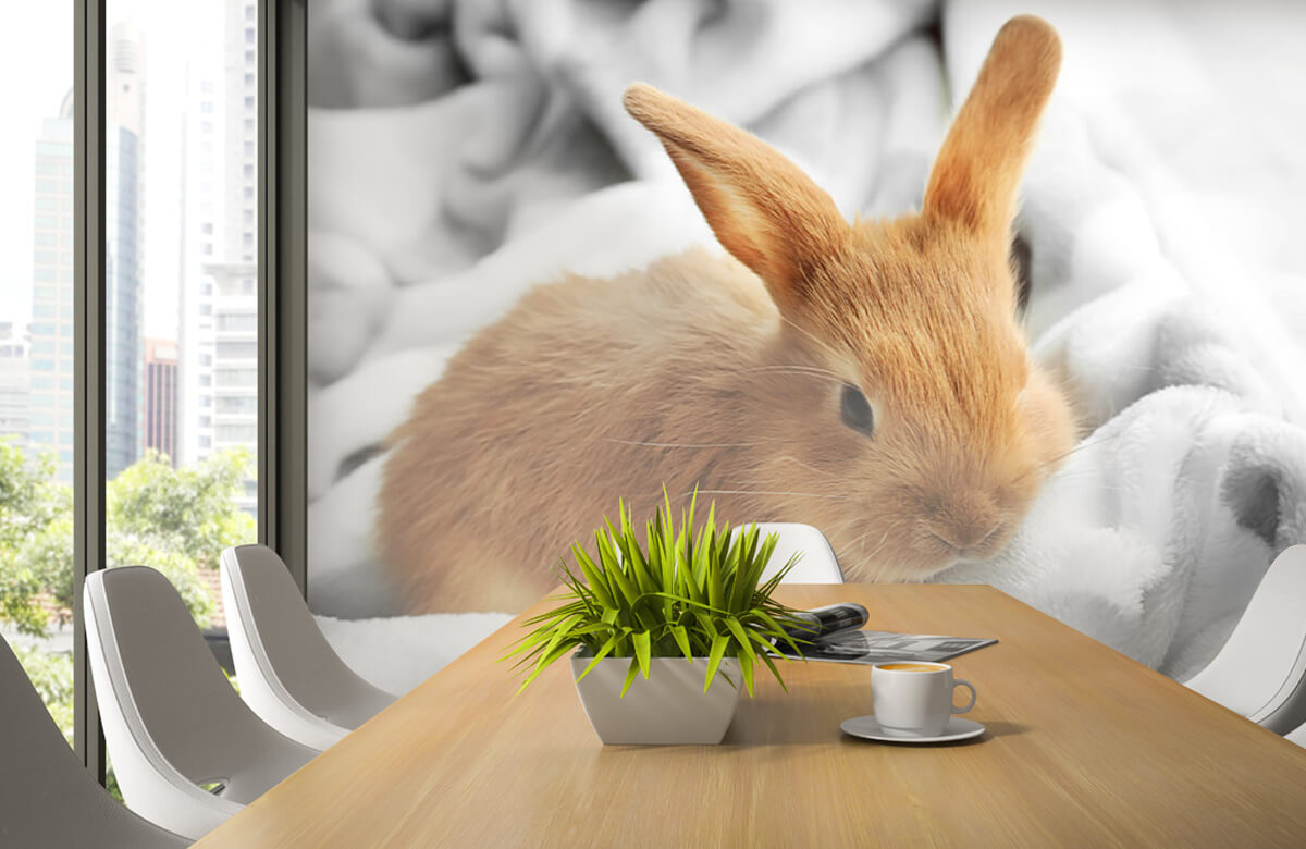 Dieren Bruin konijntje 6