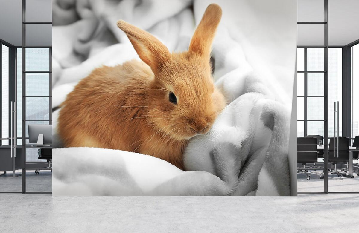 Dieren Bruin konijntje 2