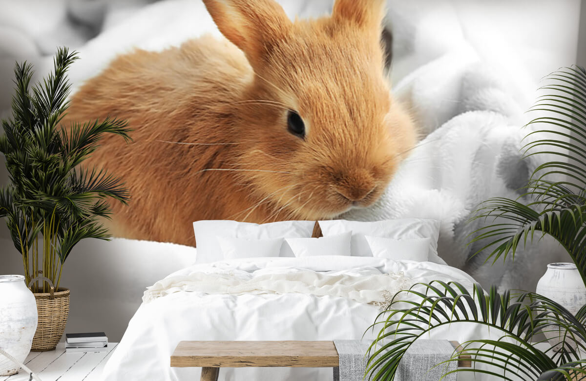 Dieren Bruin konijntje 5