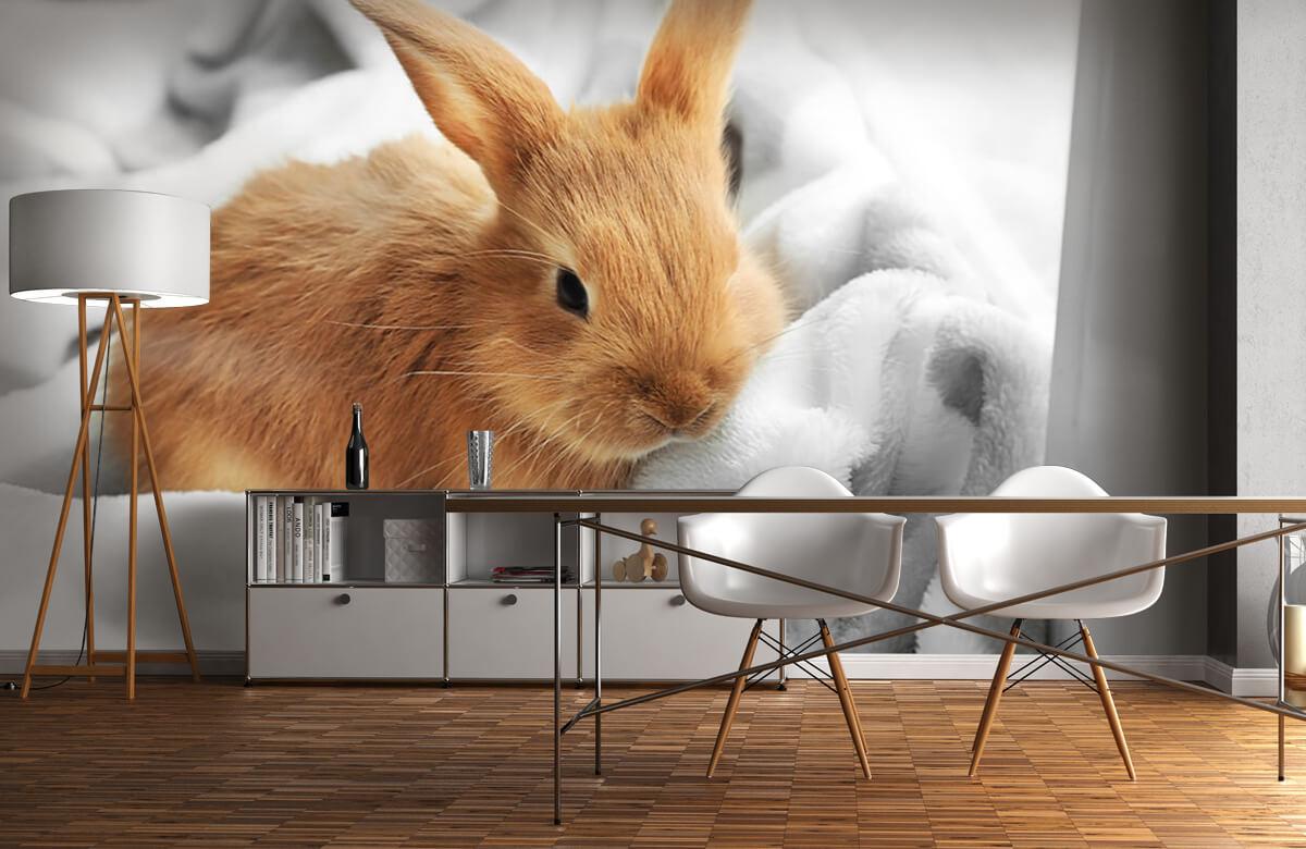 Dieren Bruin konijntje 10