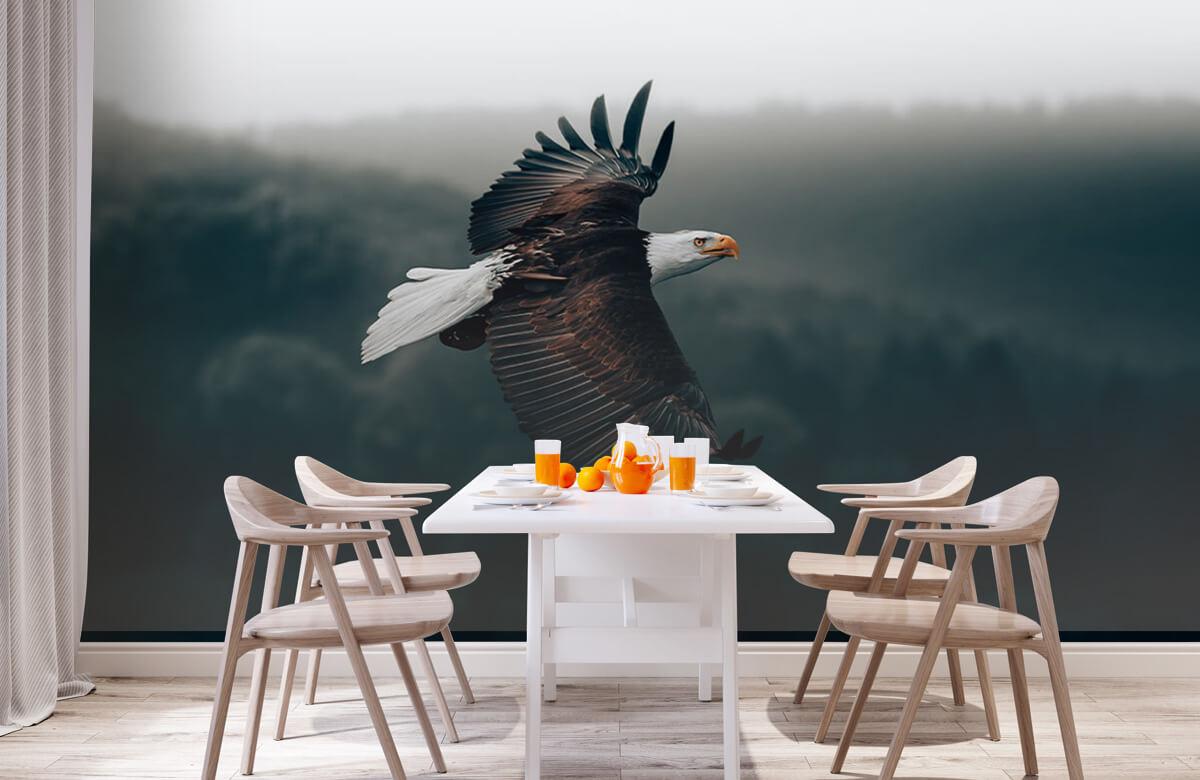 dieren Vliegende adelaar 3