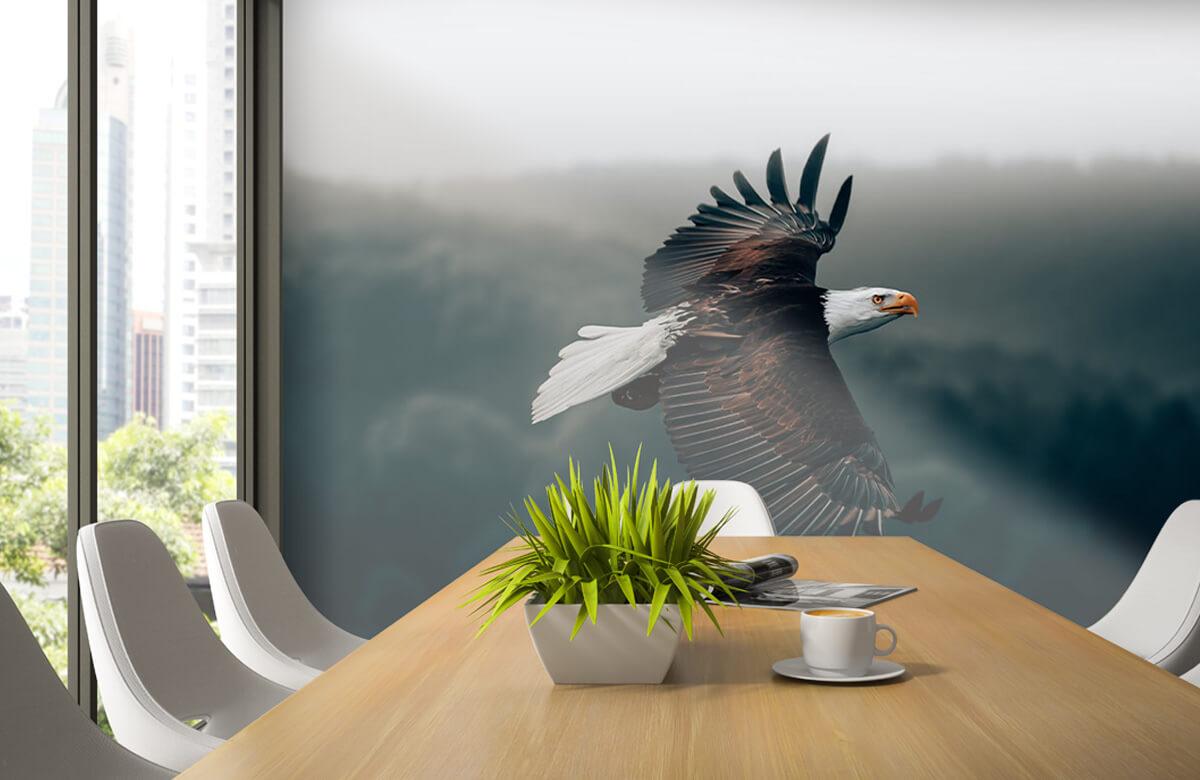 dieren Vliegende adelaar 6