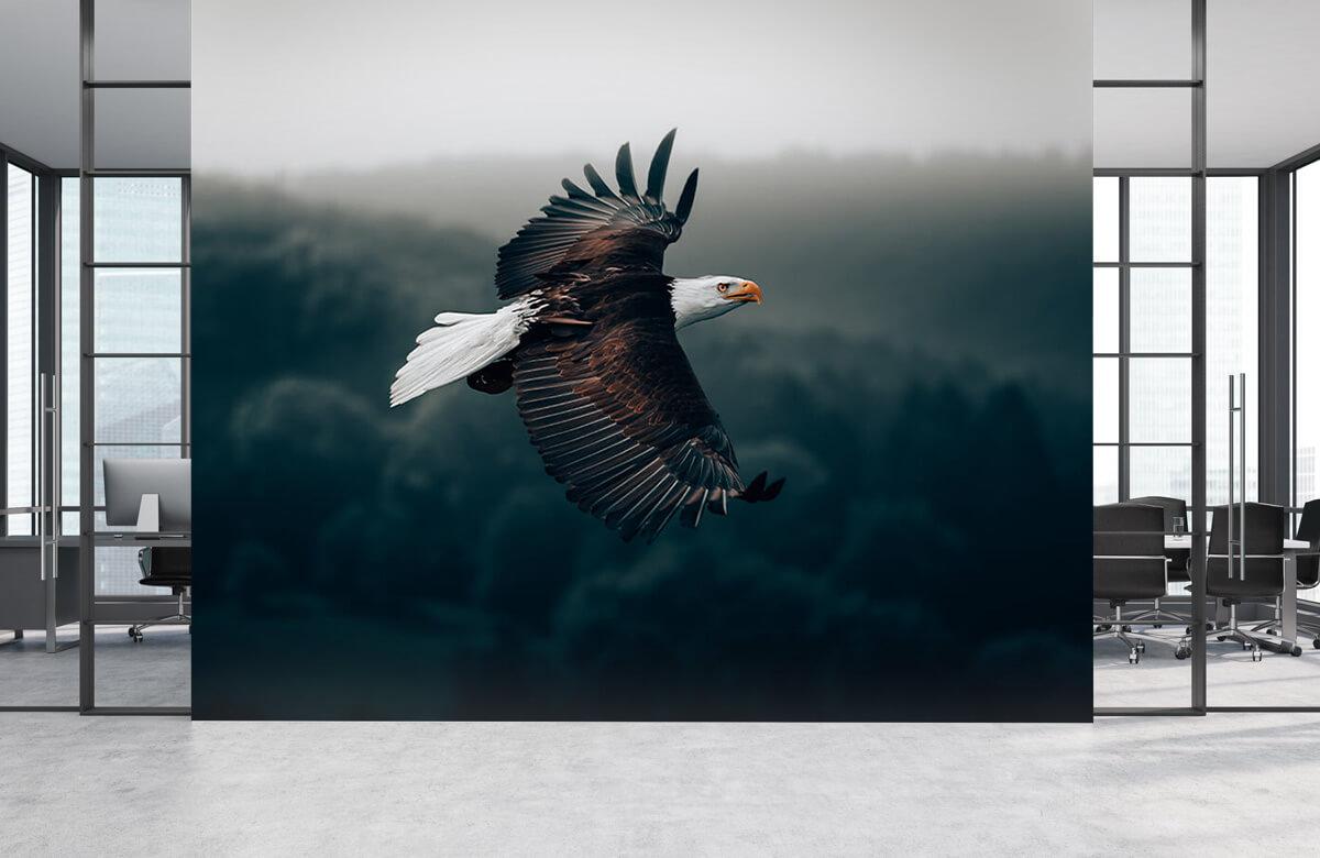 dieren Vliegende adelaar 4