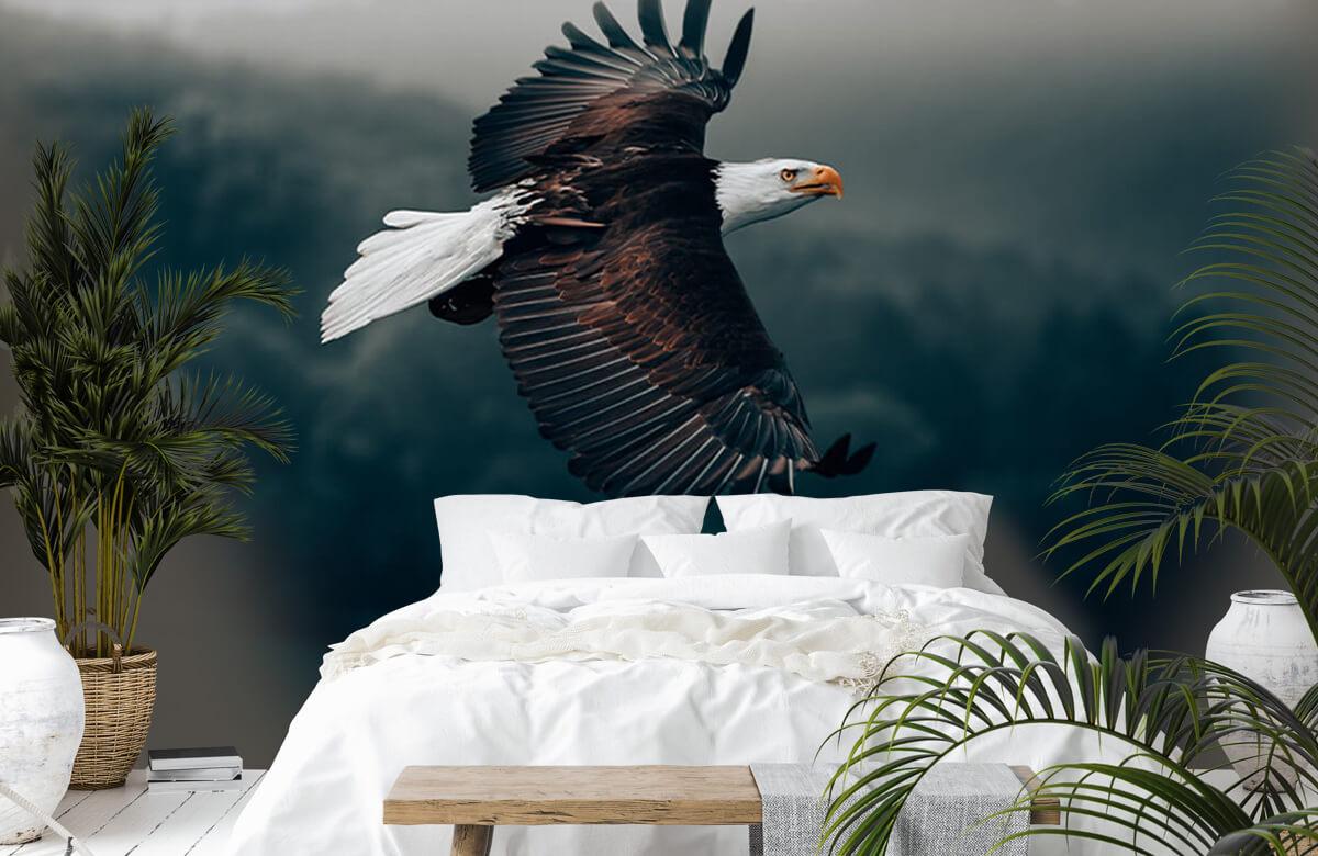 dieren Vliegende adelaar 2