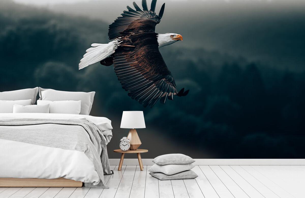 dieren Vliegende adelaar 9