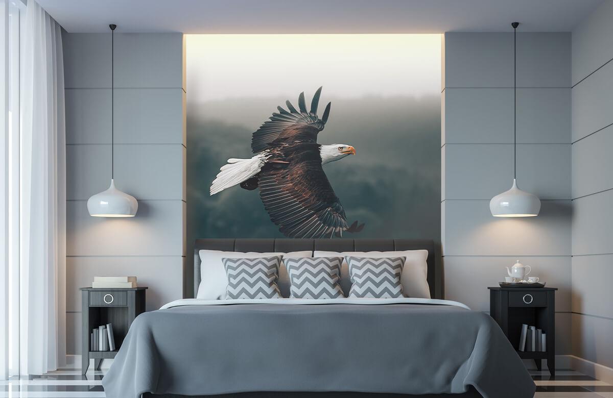 dieren Vliegende adelaar 5