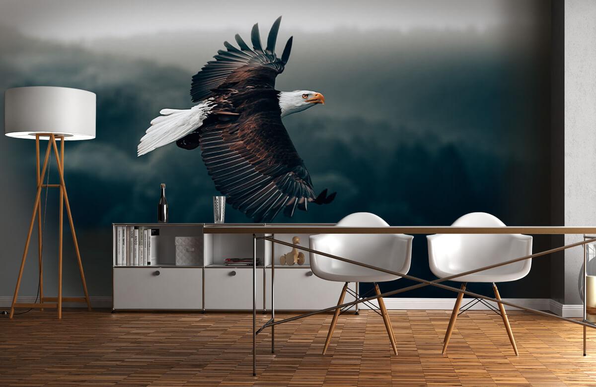 dieren Vliegende adelaar 1