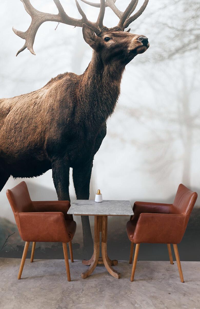 dieren Hert in de mist 5