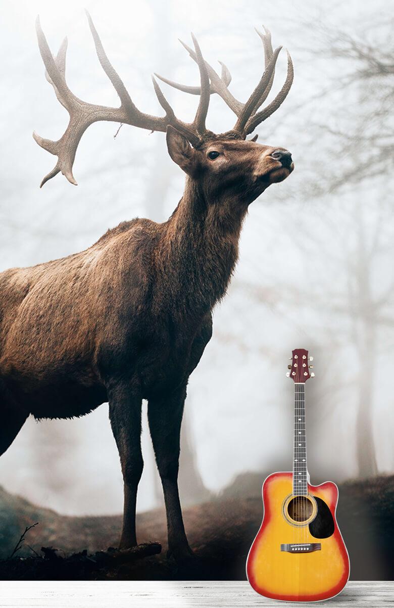 dieren Hert in de mist 3