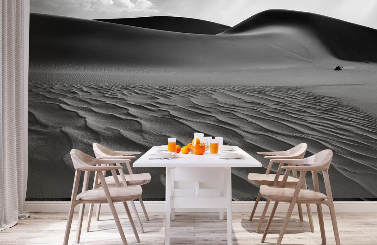 The Living Dunes, Namibia I 3