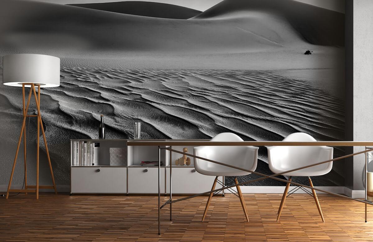 The Living Dunes, Namibia I 11