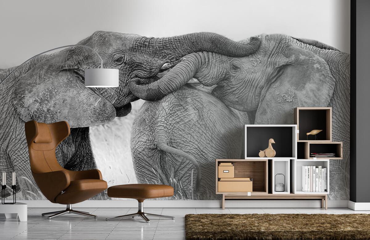 Elephant Playing 7
