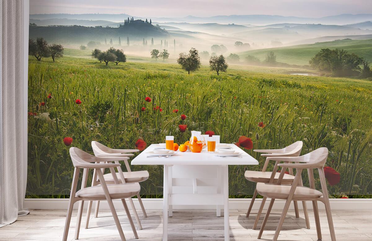 Landscape Tuscan spring 2