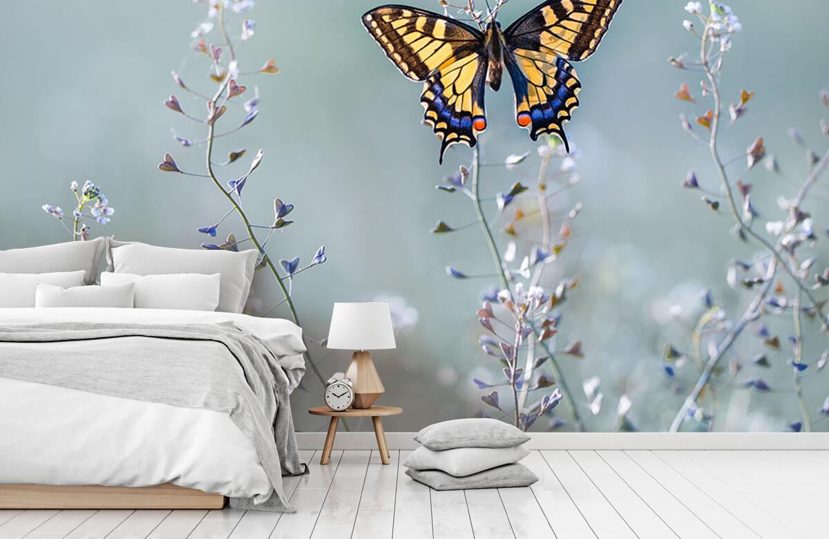 Macro Swallowtail beauty 11