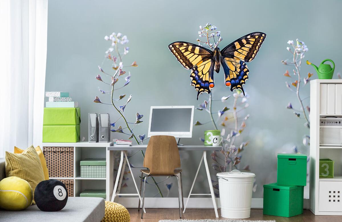 Macro Swallowtail beauty 10