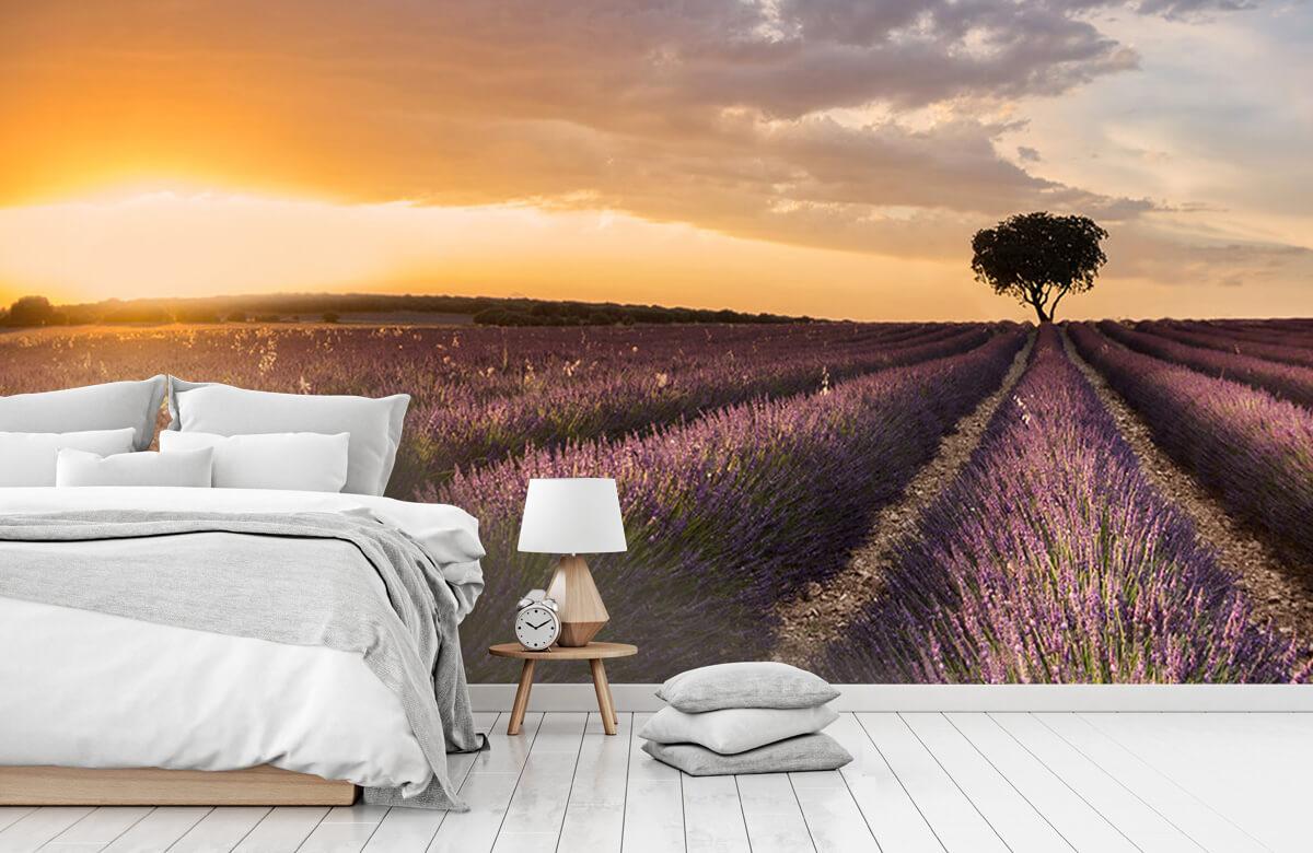 Landscape Destination lavender 9