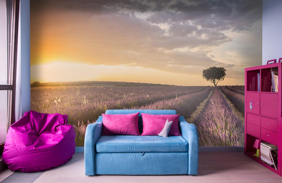 Landscape Destination lavender 3