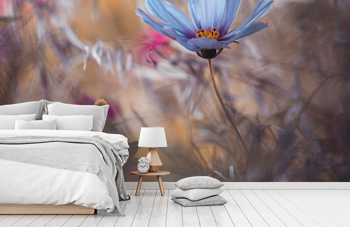 Macro Things that flowers tell 10