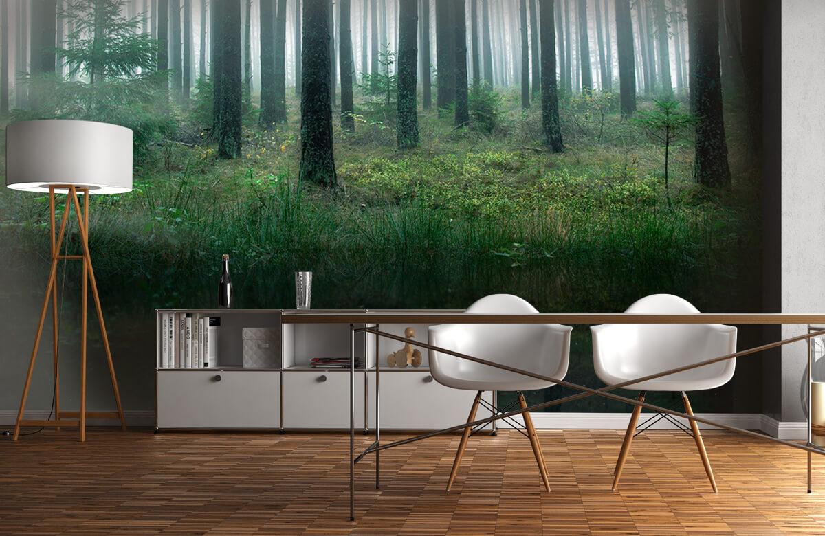 Landscape Lake in forest 10