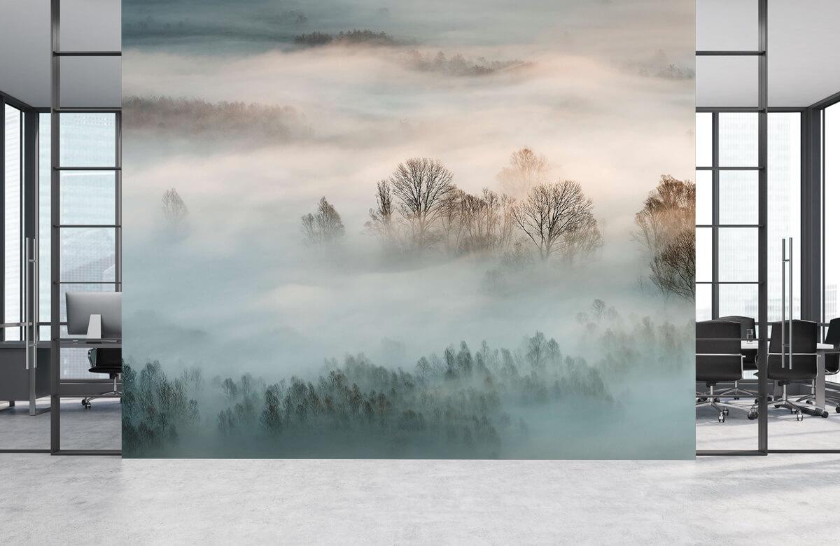 Landschap Winter fog 6