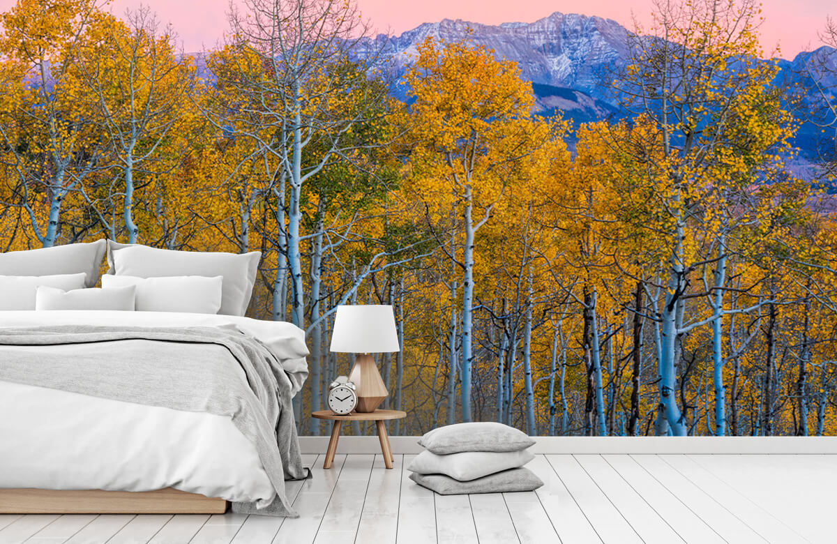 Landscape Autumn Delight 5
