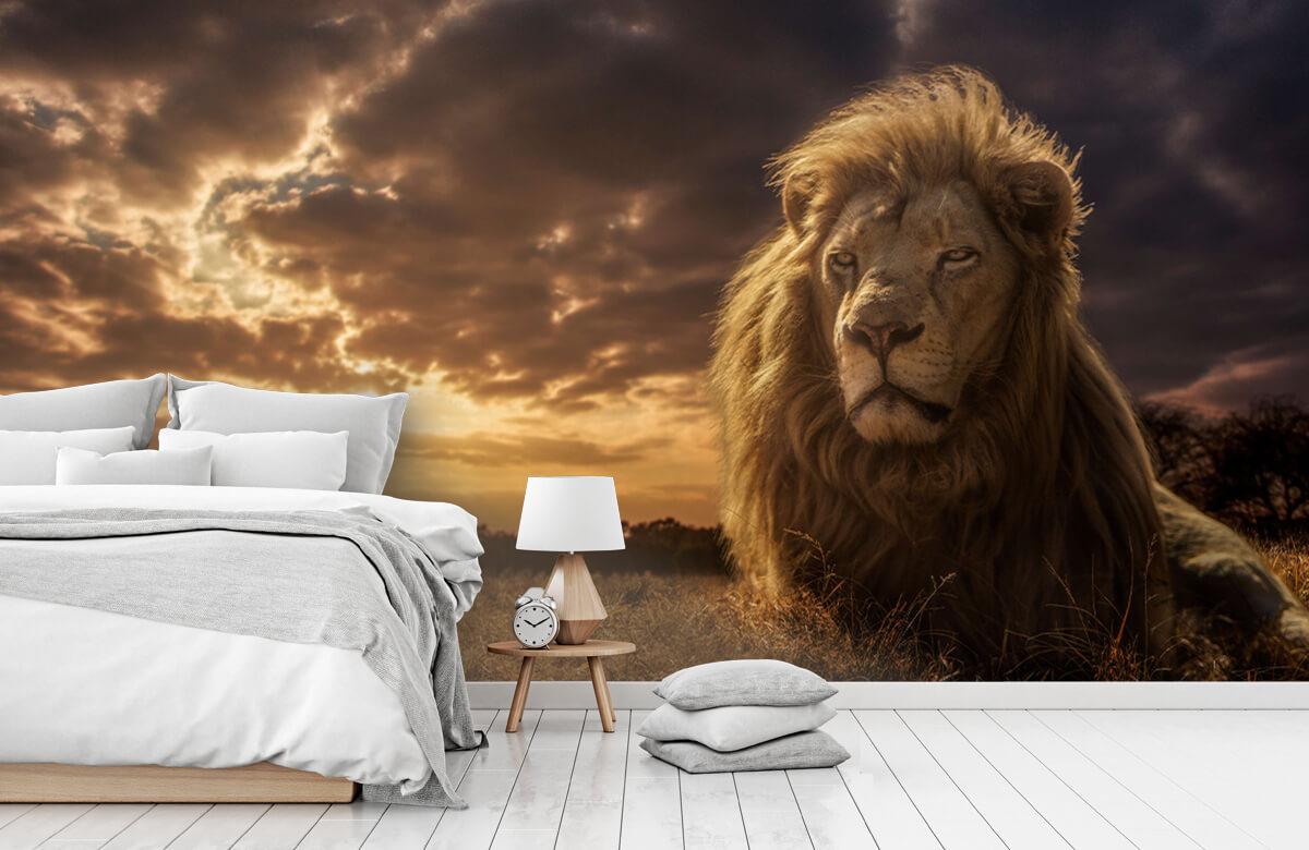 Animals Adventures on Savannah - The Lion King 5