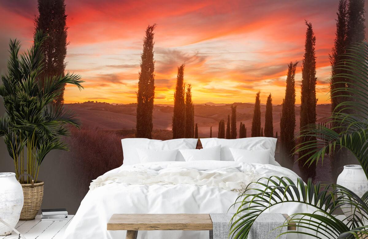 Landscape Tuscany sunset 5