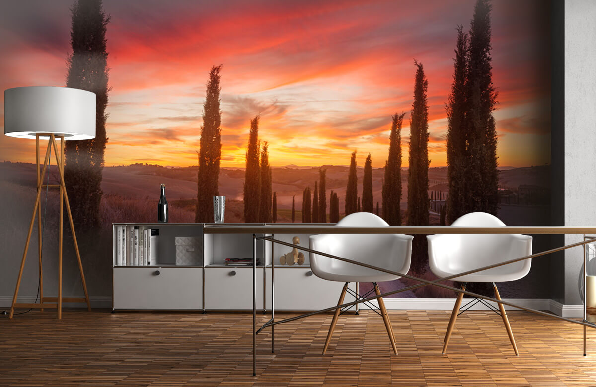 Landscape Tuscany sunset 4