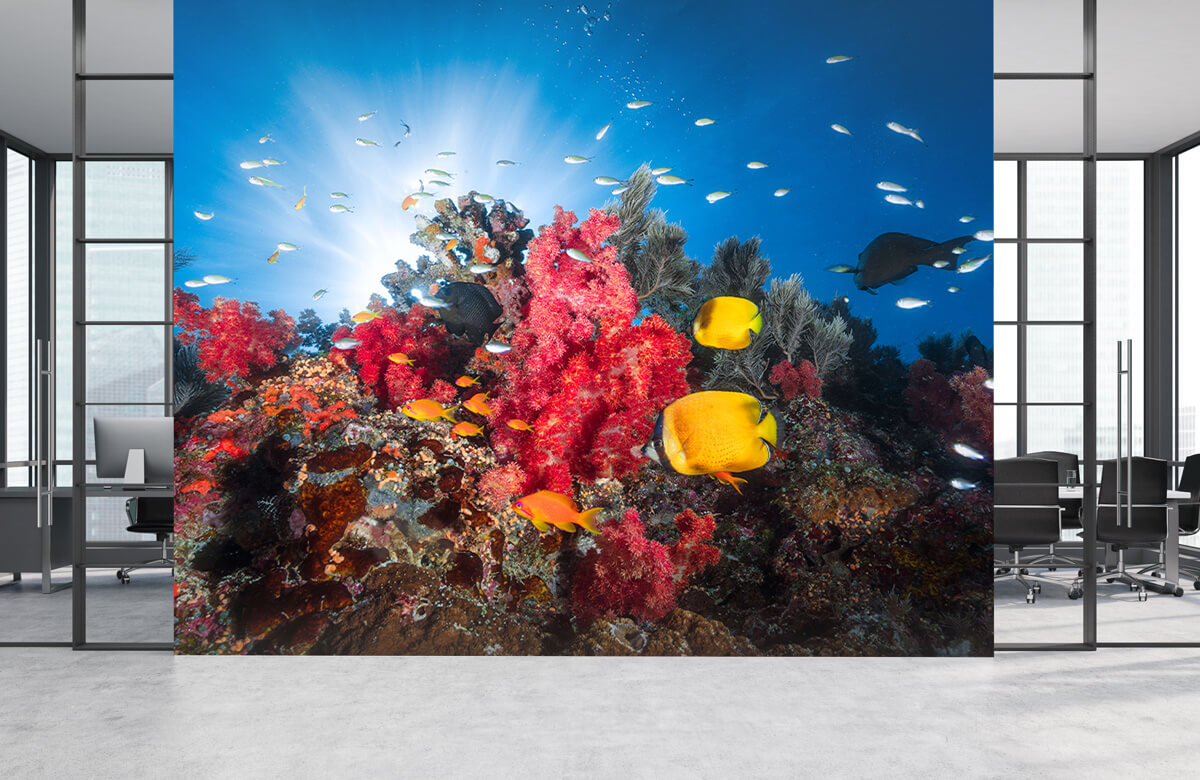 Underwater Reef life 4