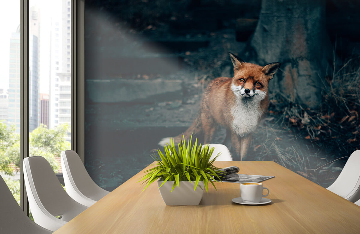 Wallpaper Nieuwsgierige vos 6