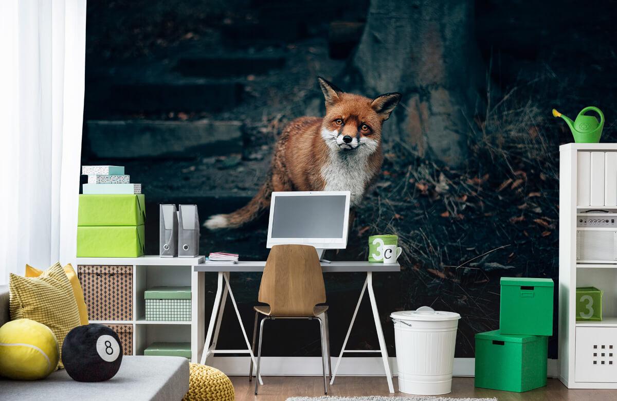 Wallpaper Nieuwsgierige vos 1