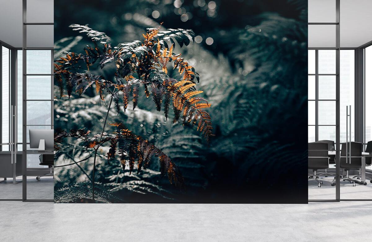 Wallpaper Herfst varen 7